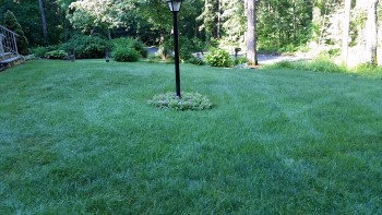 FERTILIZATION PROGRAM IN MONSON, MA