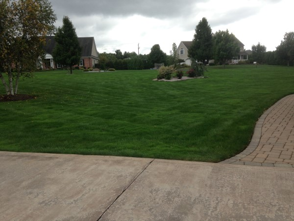 LAWN CARE SERVICES IN EAST LONGMEADOW, MA