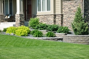 tree and shrub care, new england lawn care, western ma, westfield ma