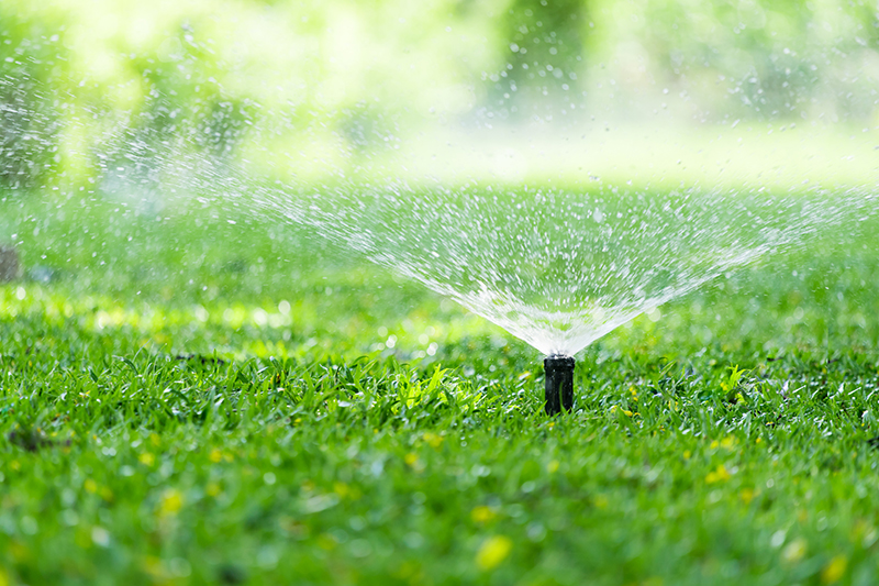 This Is A Photo Of A Sprinkler Watering A Lawn